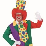 perruque clown TOP 1 image 2 produit